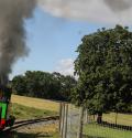 whipsnade zoo steam train